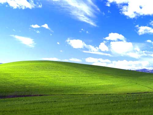 Windows XP Default Wallpaper(윈도우 바탕화면 초원)