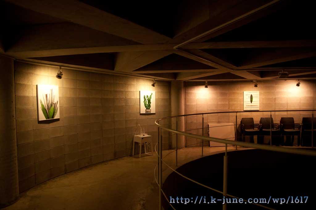 둥글게 꺽인 복도. 벽에는 그림들이 전시되어 있다.