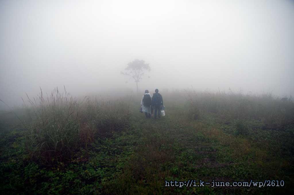 안개낀 민둥산의 모습