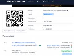 Blockchain.com의 블록체인 조회에서 비트코인 주소 조회